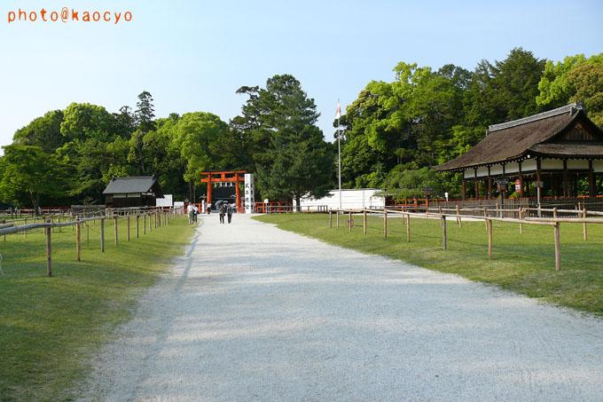 09_上賀茂神社.jpg