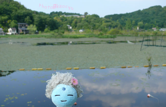 33_深泥池と大仏くん.jpg