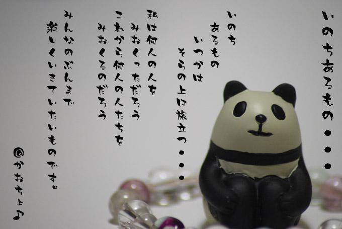 パンダと詩.jpg